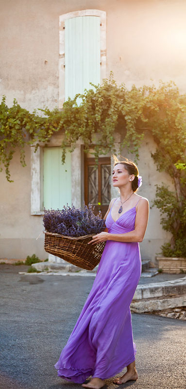 Woman with basket of freshly cut lavender