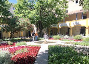 Van Gogh Garden