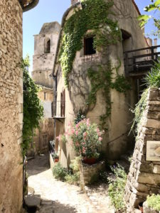 Provence Spring Tour