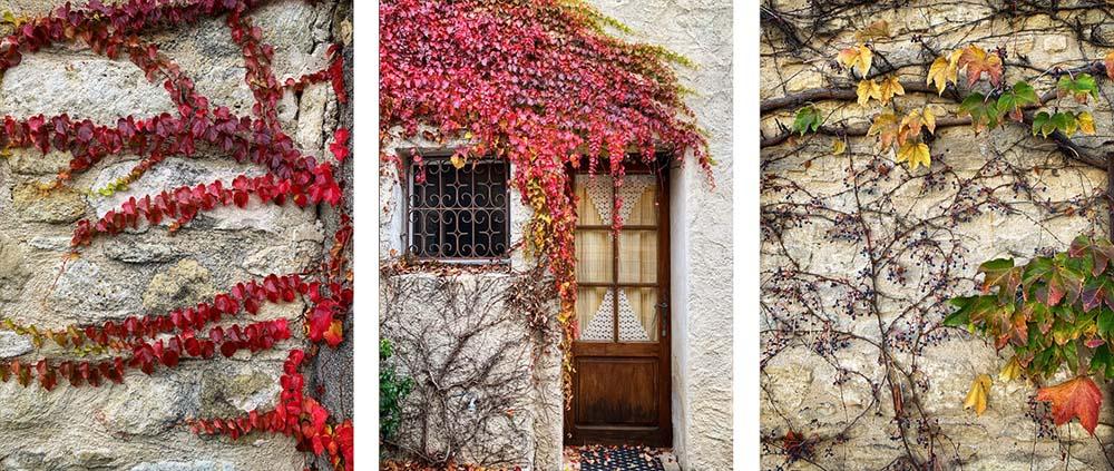 Fall Photography Tour
