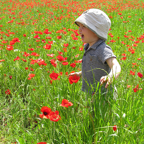 Child laughing in poppy field